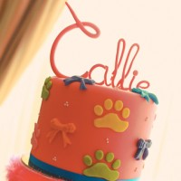 Callie's Christening & 1st Birthday